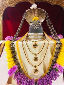 Mahanyasa Parayanam, Sivabhishekam, Archana Harati.